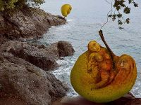 sculptures-on-the-coast_skulpture-na-obali