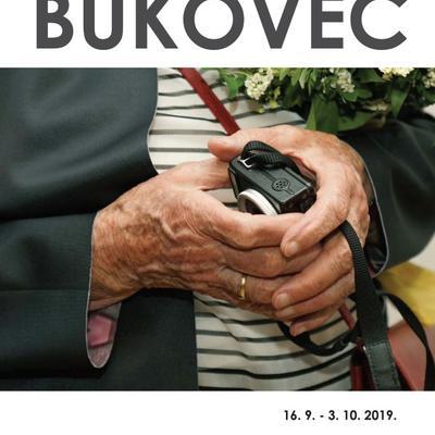 Antun Bukovec RUKE UMJETNIKA II - izložba fotografija